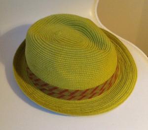 lime grön hatt photo